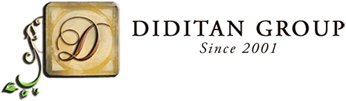 Diditan Group Sticky Logo